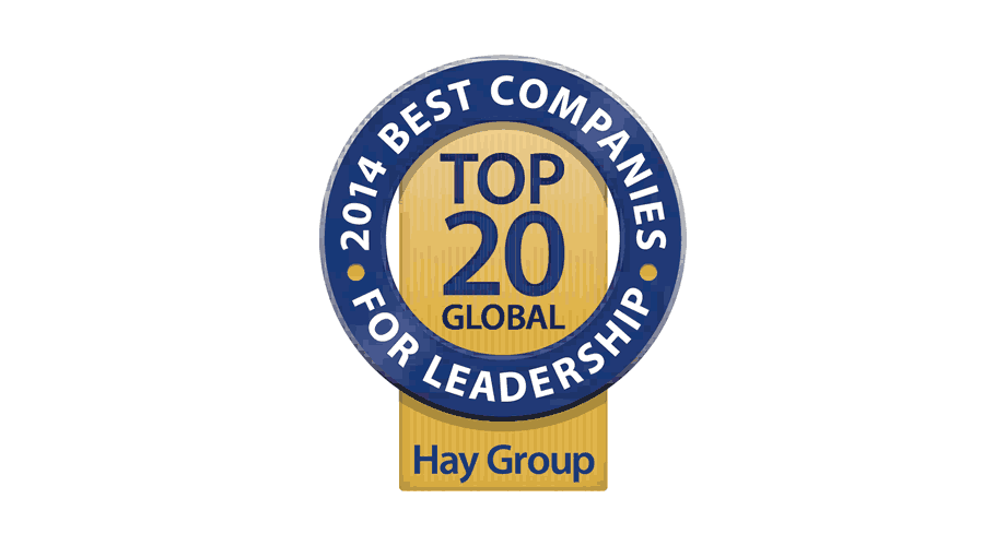 Hay Group 2014 Best Companies for Leadership Logo