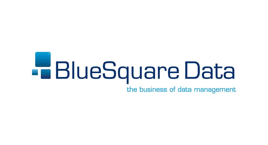 Blue Square Data Logo