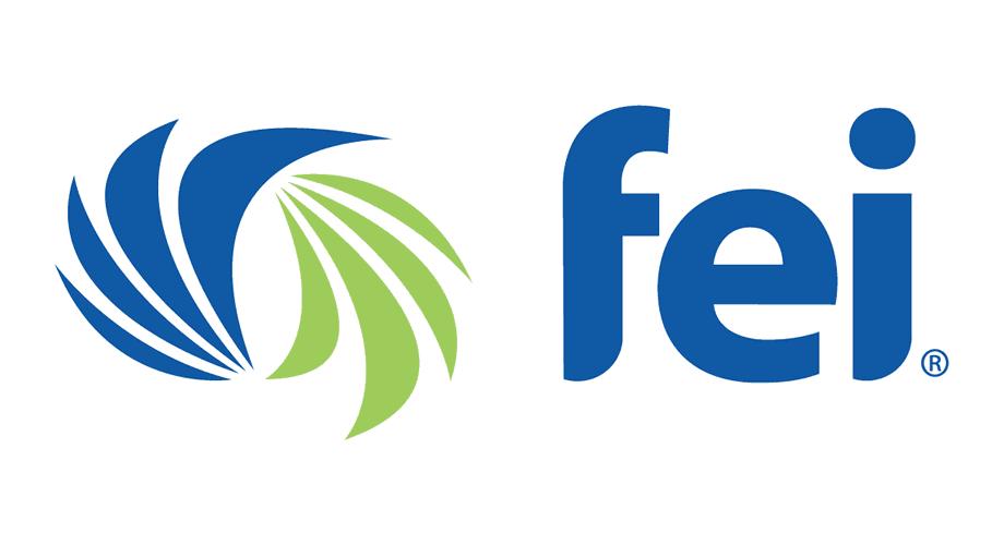 Financial Executives International (FEI) Logo